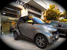 Smart ForTwo GREYSTYLE EDITION F1 δερμα