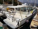 Pursuit  3400 Express '02 - 110.000 EUR