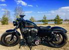 Harley Davidson Sportster Forty-Eight XL1200X Forty-Eight - 48