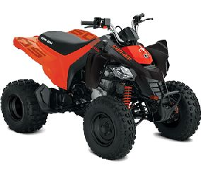 CAN-AM  YOUTH DS 250 2020 NEW