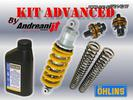 Andreani Kit Advanced Fork Pistons and Shock Absorber Ohlins...