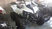 Dirt Motos  WARRIOR SPORT 125cc