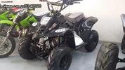 Dirt Motos  BIG FOOT 110CC SC