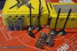 PROX KIT VALVES & SPRINGS (STEEL)