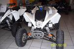 Eagle  MAD MAX 300CC
